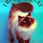 the-birman-cat