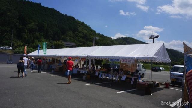 Sayo sunflower festival  5  14