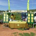 Casita Verde at the Saturday local & organic market