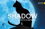 رواية، خيال، shadow