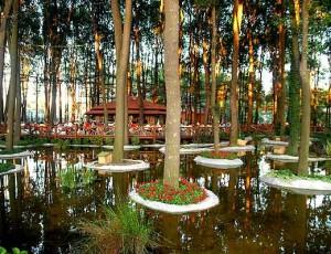 orman park sakarya