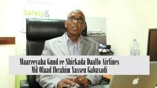 DAAWO MUQAAL:Yaa ka danbeeyey qaraxii Diyaarada Daallo Airlines iyo Mareeyaha Guud ee sharikada Colaad Gabaxadi Oo ka waramaaya.