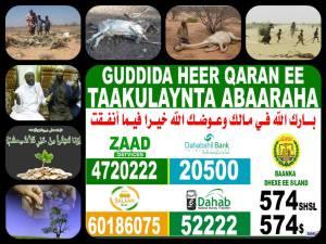 gudida-abaaraha