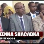 Daawo Muqaal:Dareenka Shacabka: Falanqaynta – Golaha Wasiirada Xukumadda Somaliya ee lagu dhawaaqay iyo ra'yiga dadweynaha ay ka dhiibanayaan…