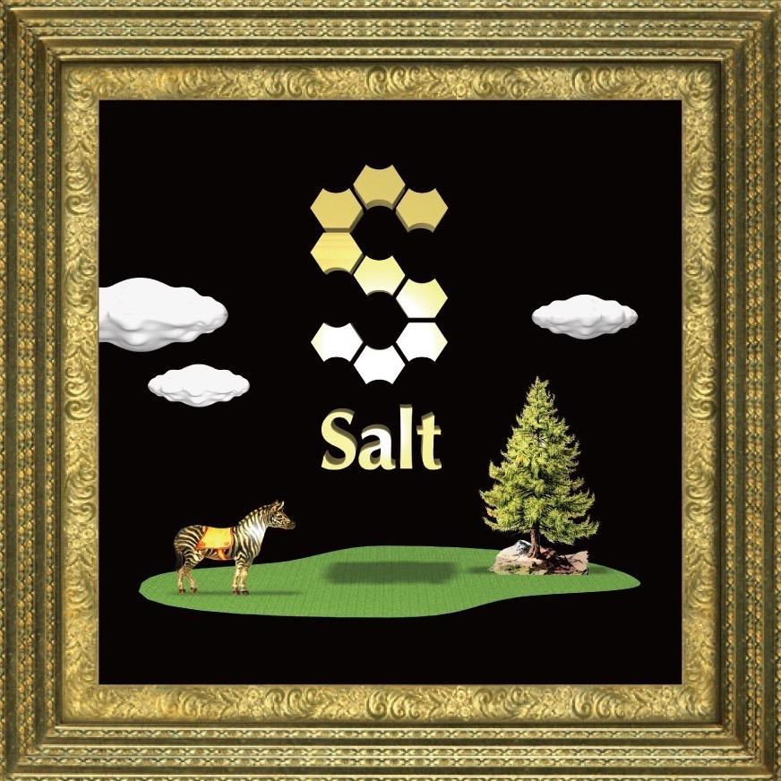 Salt Home 写真