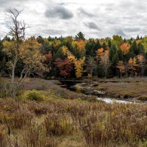 Fall may be my favourite season Maine has so muchhellip