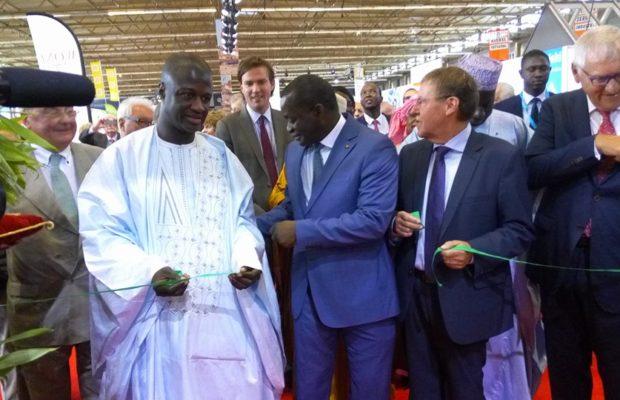 Momar Dieng Diallo, Flandres expo, Sénégal à l'honneur