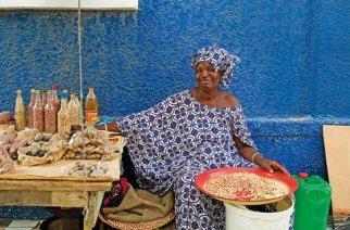 VIDÉO – REPORTAGE : Les nouveaux explorateurs au Sénégal