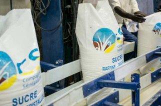 La Compagnie sucrière sénégalaise emploie plus de 5000 personnes en haute saison. © Sylvain Cherkaoui pour Jeune Afrique