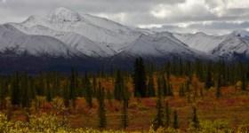 Colours of Denali National Park
