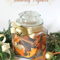 Christmas Spice Simmering Potpourri