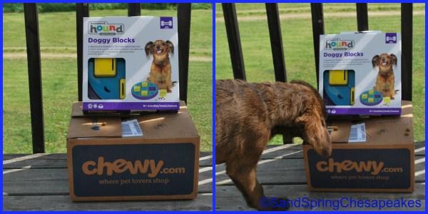 Outward Hound Doggy Blocks.