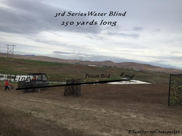 My Diagram of the water blind.