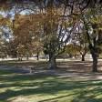 Totoras busca a la primera pareja que se quiera casar en un espacio público