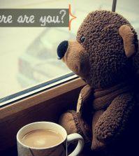 sad-teddy-bear-wallpaper-631x473