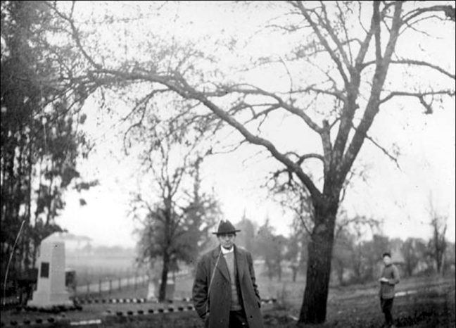 """Unknown man posing in front of the black locust """"hangman's tree"""" in Santa Rosa Rural Cemetery. Photo: Hamilton H. Dobbin collection, California State Library"""