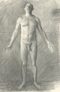 Anatomical Position - Anterior Male