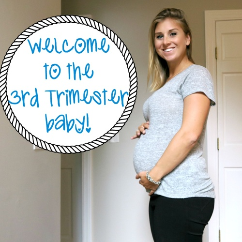 Pregnancy Update: Week 26 – Into the 3rd Trimester