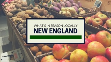 Seasonal Produce Guide – Early Spring in New England