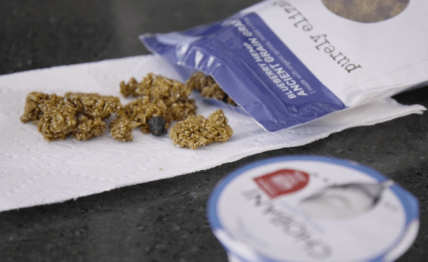 Simple Elizabeth Granola Greek Yogurt