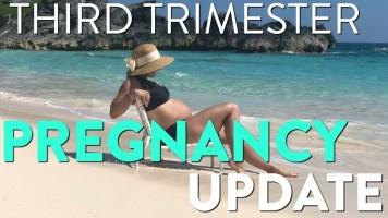 Third Trimester Pregnancy Update: 31 Weeks