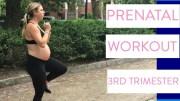 Third Trimester Prenatal Workout #2 | No Equipment Pregnancy Workout