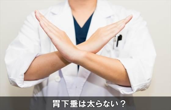 ikasuifutoranai14-1
