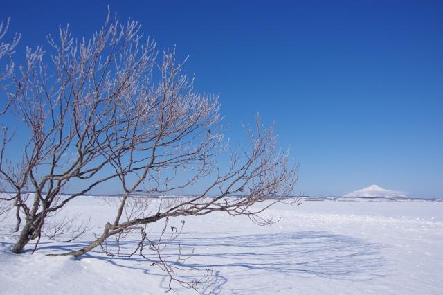 厳冬のサロベツ原野
