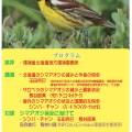 シマアオジシンポジウム(11/26北大博物館)