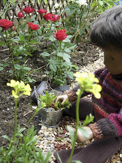 Gardening 38