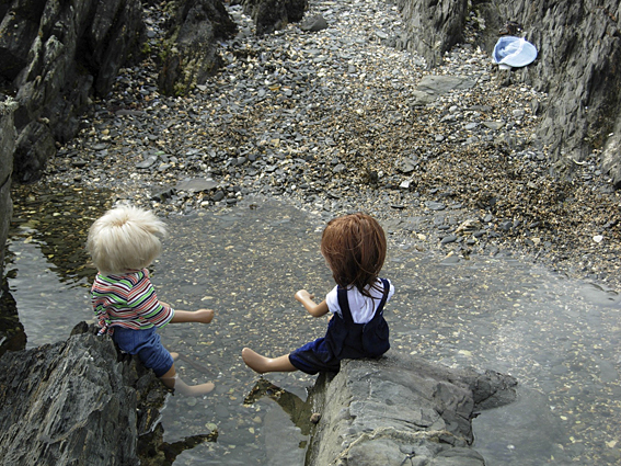 Rock Pools Story 25