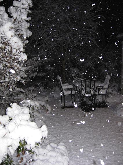 Snowed 1