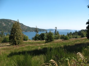 view from a road on SaltSpringIsland