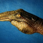 Images Of Beautiful Hand-Art by Guido Daniele