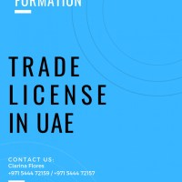 Three Activities Trading License in UAE | Call #971544472157