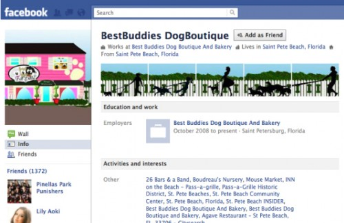 new facebook profile hack19 e1293997350865 35 Most Amazing And Creative Examples Of New Facebook Profile Page Design