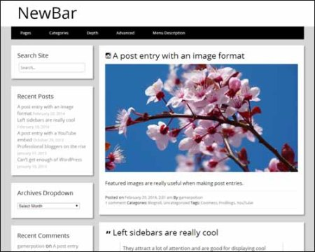 NewBar Free WordPress Theme