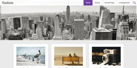 Radiate 450x225 75 Best Free Wordpress Themes of 2014 Till July