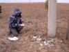 Описание в 2011 г. места гибели беркута на ЛЭП. Забайкальский край. Фото Олега Горошко