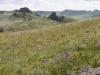 Инвентаризация сохранившихся степных экосистем (степных массивов) России