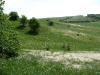 Перистоковыльные степи в урочище Крейдянка. Курская область. Фото А. В. Полуянова