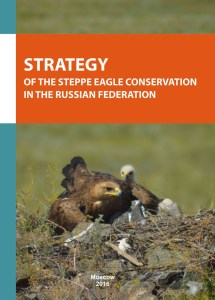 Strategy of the Steppe Eagle conservation in the Russian Federation