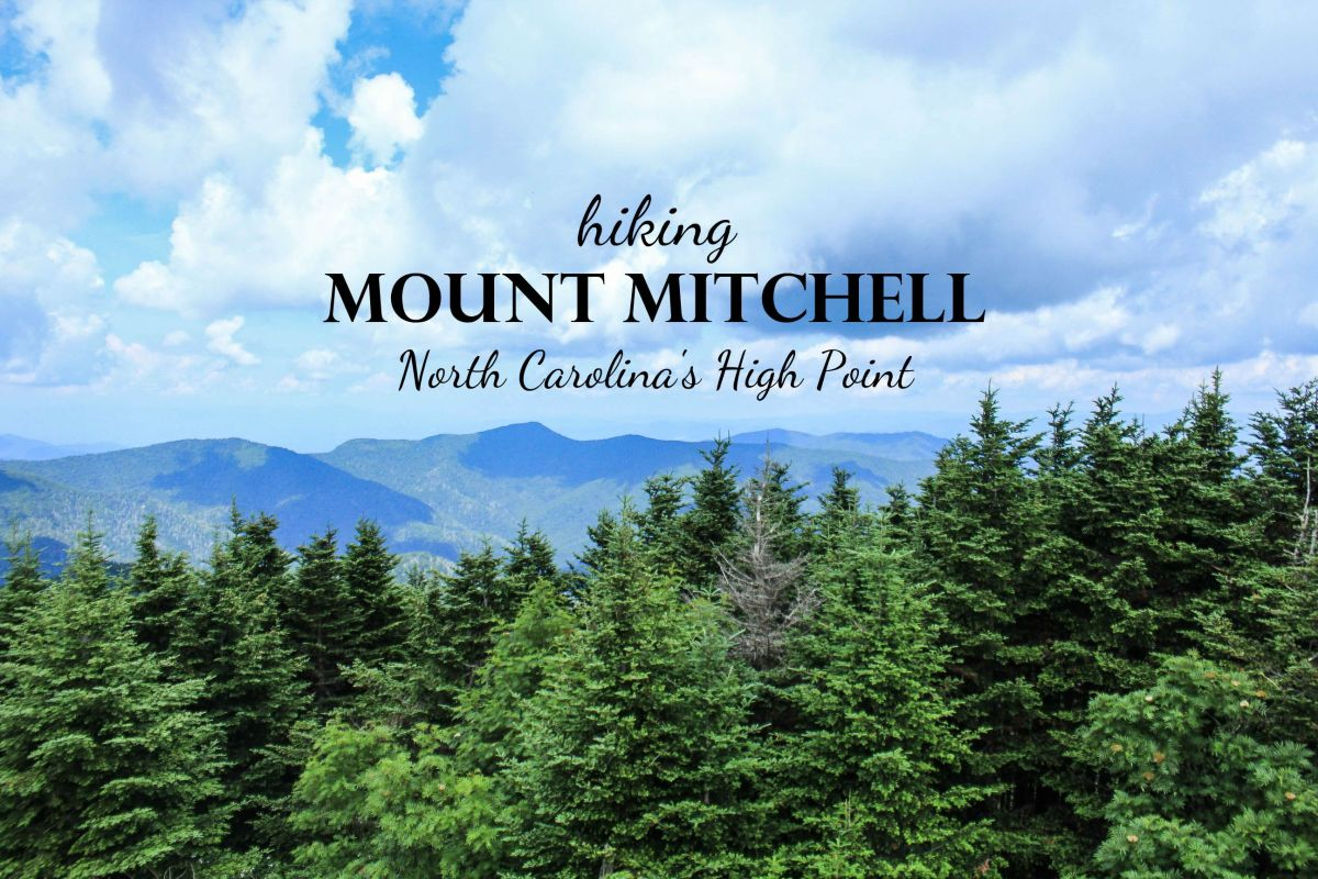 Hiking Mount Mitchell