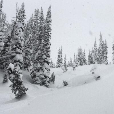"""Quite the cycle we're in - the snow doesn't stop! Another 6"""" last night atop the 20-30"""" we've received during the past week. Here assistant guide @tanner.haskins tries to find the bottom and fails. #powderpatrol"""