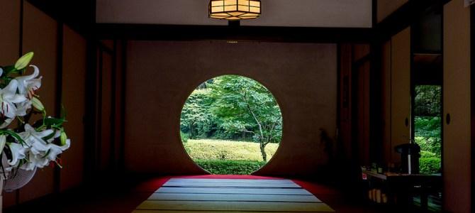 夏の北鎌倉 明月院と円覚寺