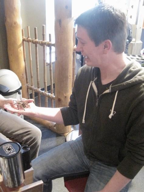Holding a furry tarantula