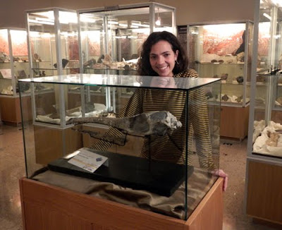Jara-Maledictosuchus (Credit: godzillin.blogspot.com)