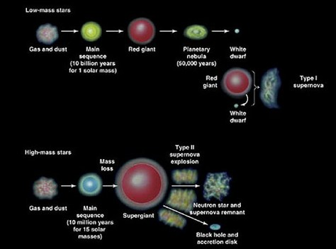 Evolution of low and high mass stars (Credit: Thomas Learning/RedOrbit)