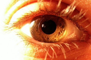 Eye (Credit: Gaelg/Flickr)