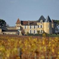 Chateau-dYquem-1